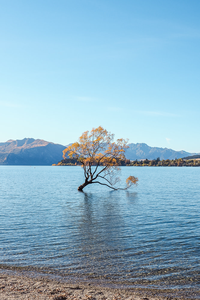 Wanaka, Queenstown Lakes District, New Zealand